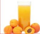apricot-orange.jpg